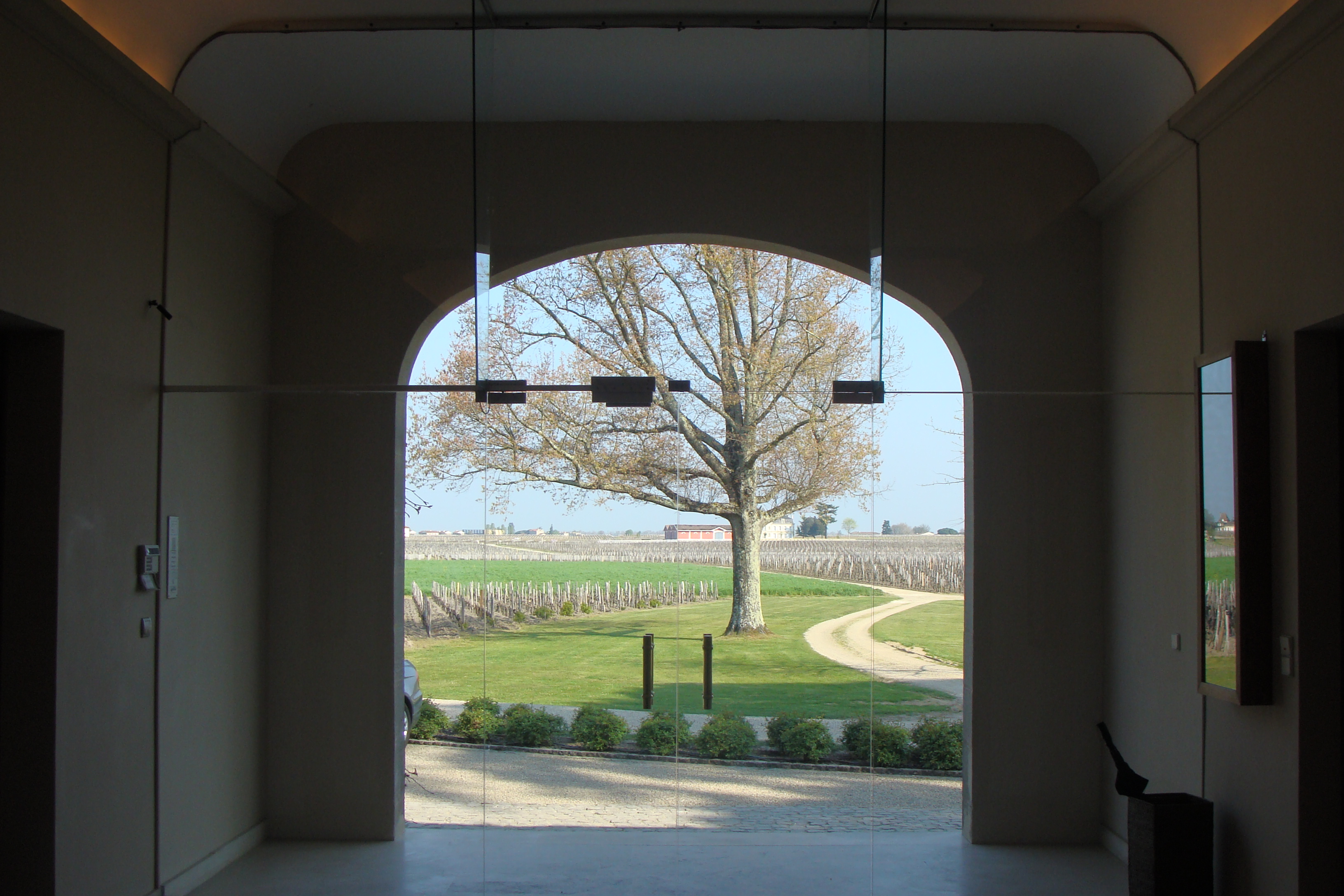 Cheval Blanc: view on the vineyard