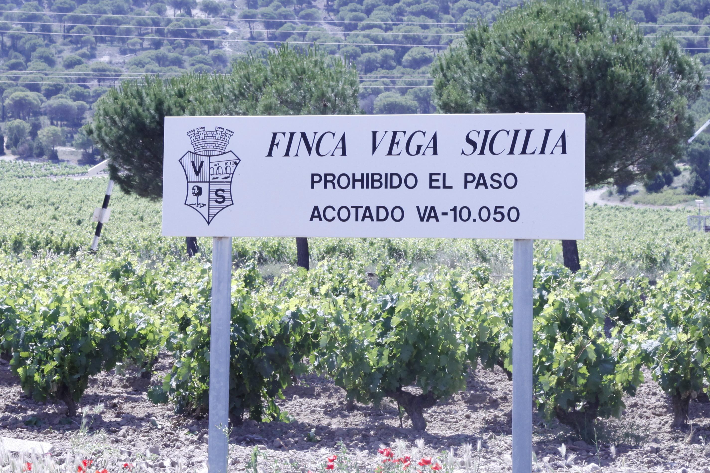 Vega Sicilia: crossing strictly forbidden