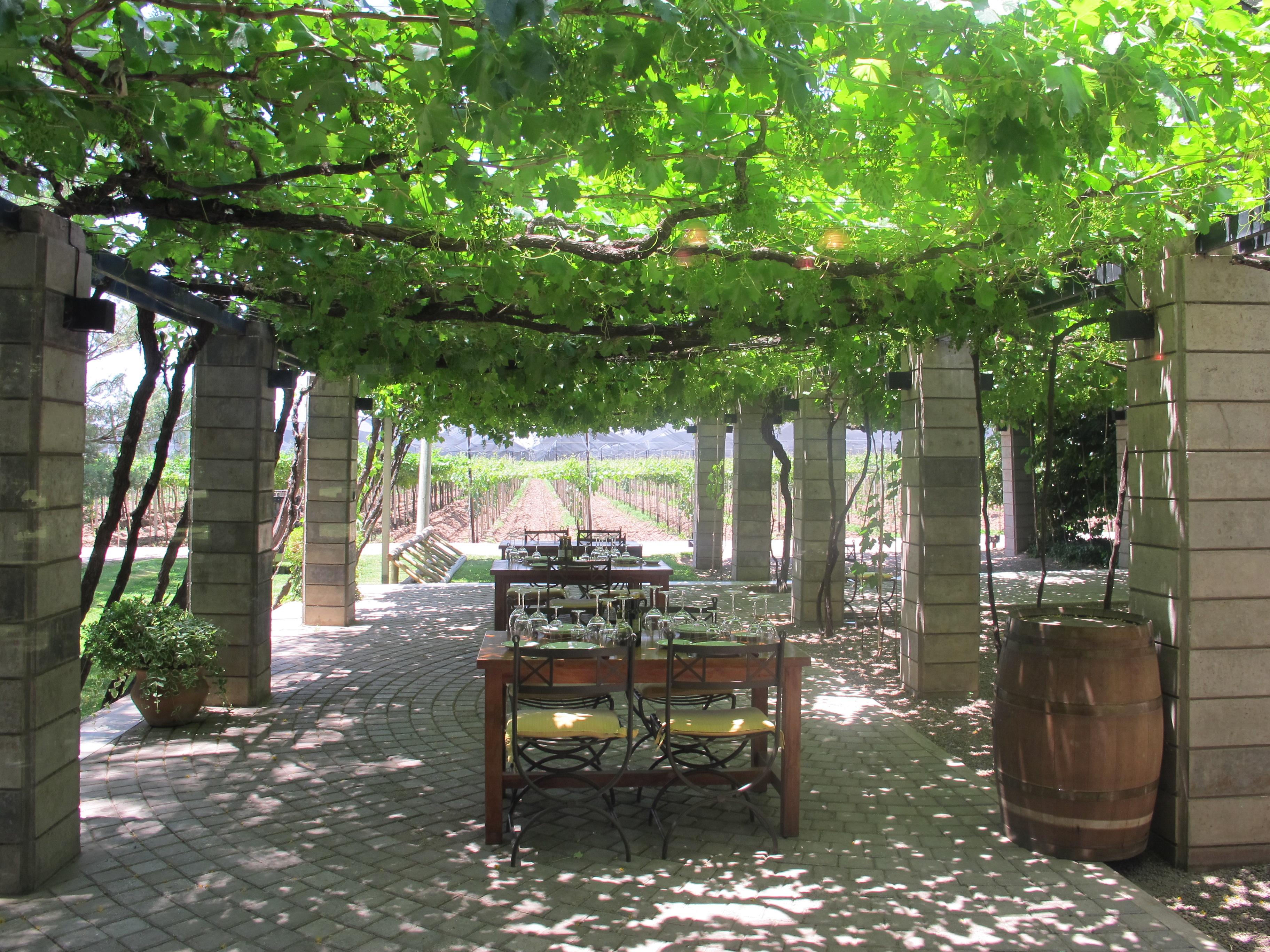 Scenic winery restaurant