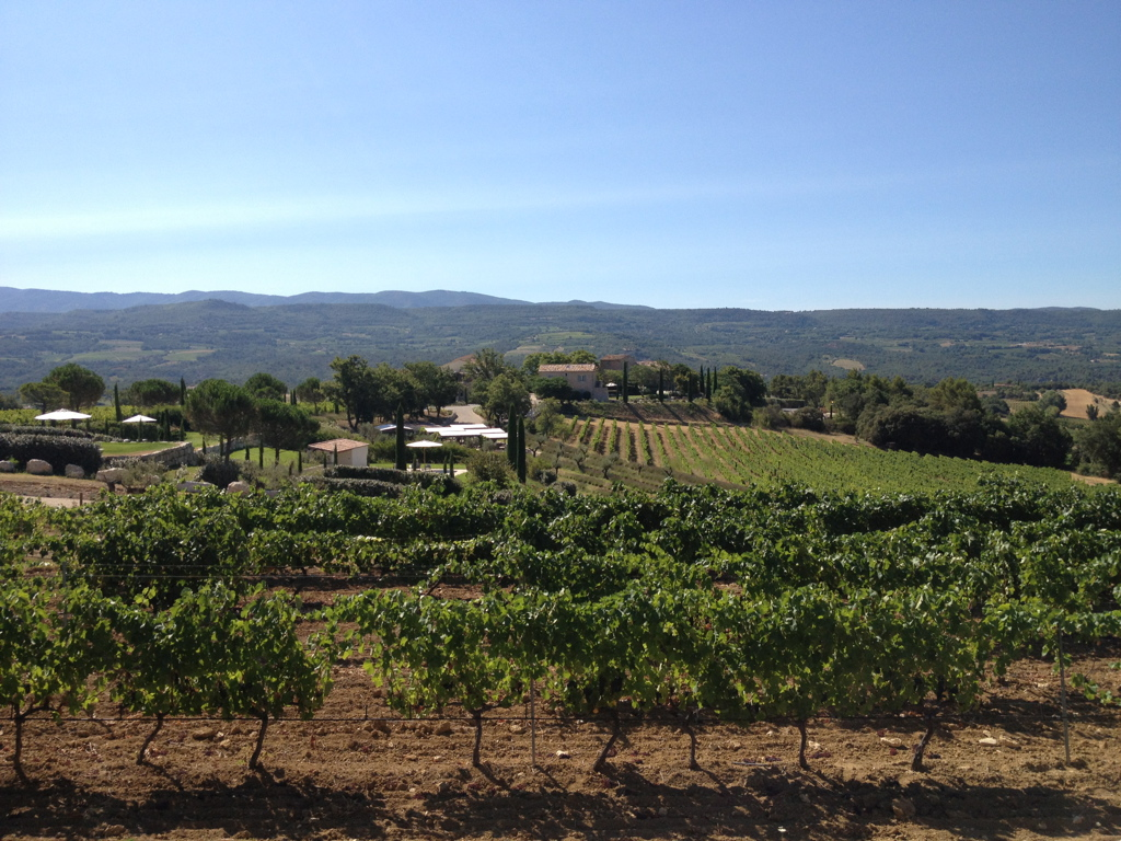 The Coquillade vineyards and hotel