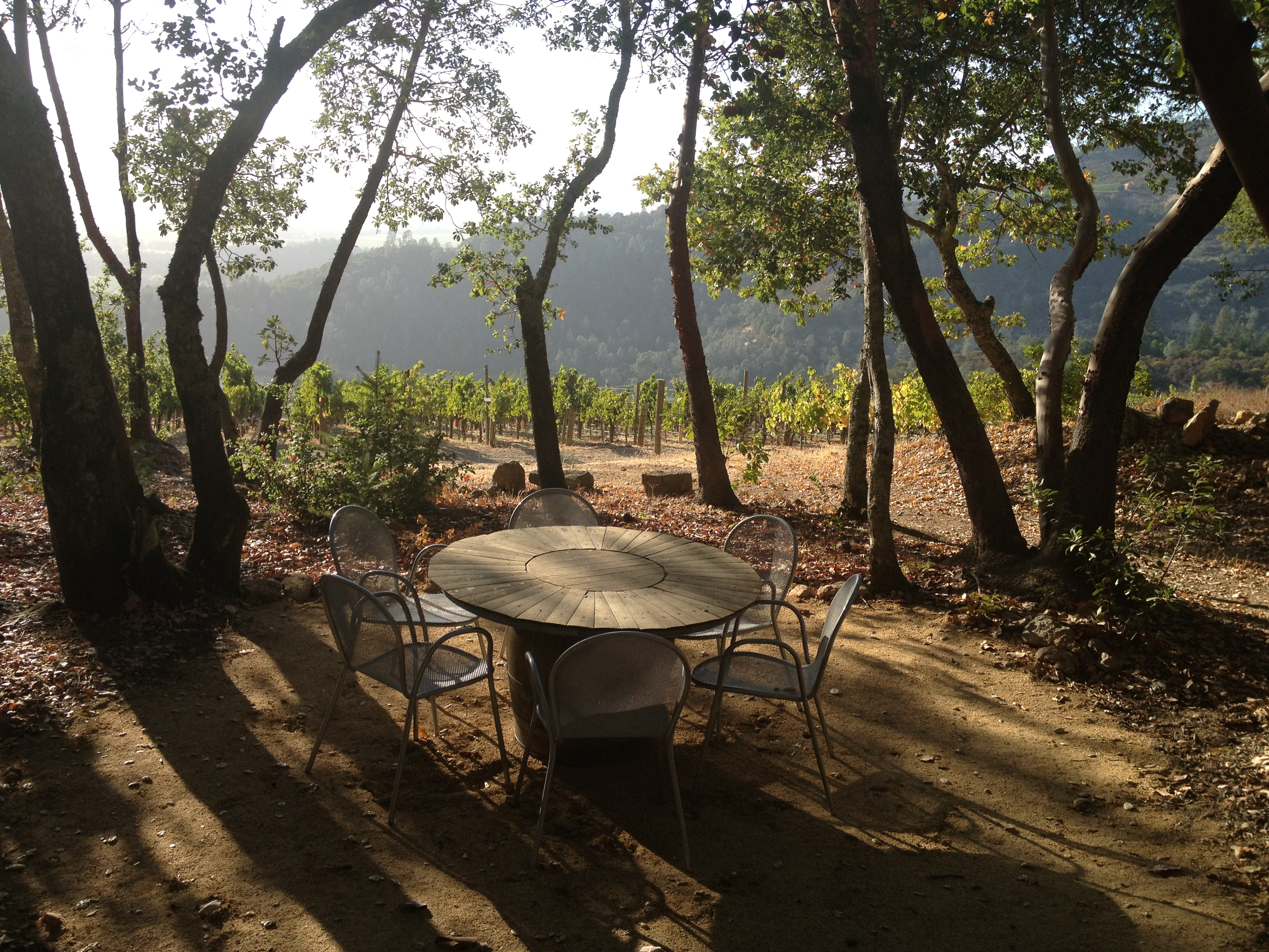 A table set outdoors above the vineyards.