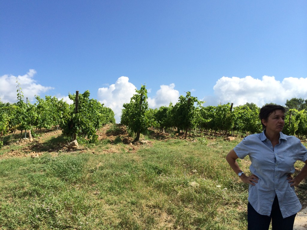 The winemaker at Val d'Iris