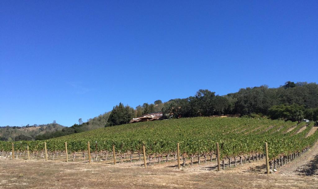 New Joseph Phelps Vineyards winery