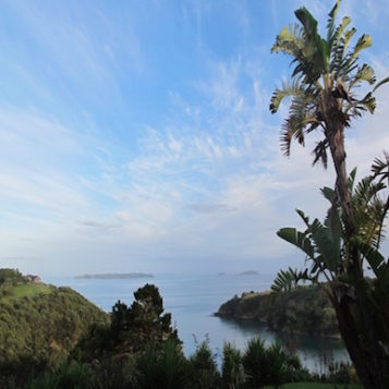 Waiheke Island: the bohemian spirit of New Zealand